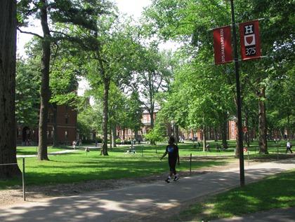 more Harvard